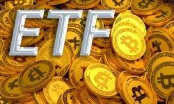 tom lee and bitcoin