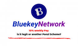BluekeyNetwork review