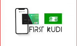 first_kudi_review