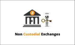 Non custodial exchanges