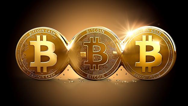 Bitcoin evolution