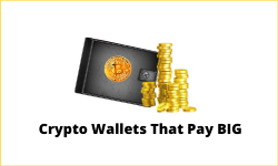Cryptocurrency wallets that pay high interest