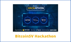 BSV Hackathon